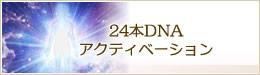 24本DNAアクティベーション